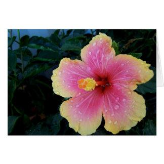 Cartão Flor do Hawaiian do hibiscus