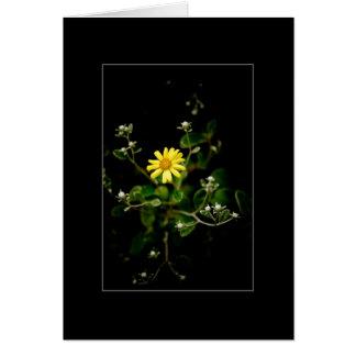 Cartão Flor e botões