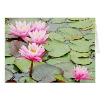Cartão Flor Lilypads floral de Waterlily do jardim da