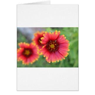 Cartão Flor pinta 2 do primavera