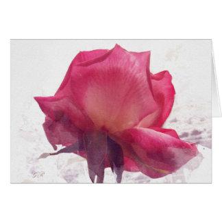 Cartão Flor. Rosa