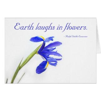 Cartão Flor roxa da íris - a terra ri nas flores