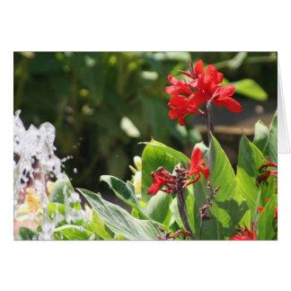 Cartão Flor vermelha alta