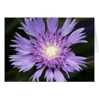 Cartão Flor violeta Notecard