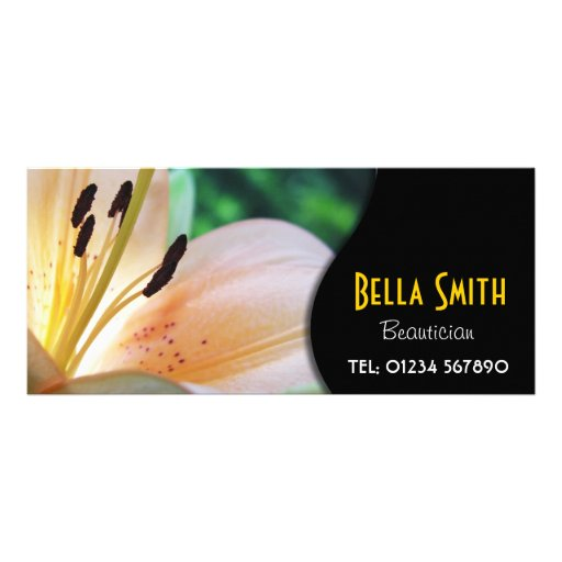 Cartão floral da cremalheira panfletos informativos