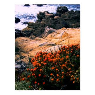 Cartão floral litoral de Califórnia