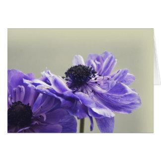Cartão floral roxo da fotografia