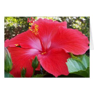 Cartão floral tropical