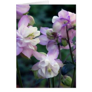 Cartão Flores aquilégias roxas cor-de-rosa