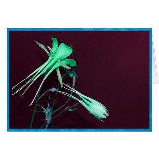 Cartão Flores aquilégias verdes