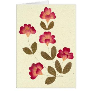 Cartão Flores cor-de-rosa brilhantes pressionadas do tubo