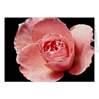 Cartão Flores cor-de-rosa de Sonia