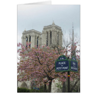 Cartão Flores cor-de-rosa em Paris