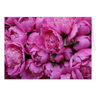 Cartão Flores cor-de-rosa luxúrias da peônia