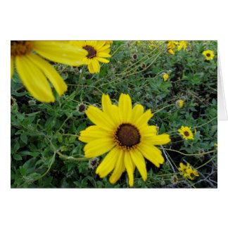 Cartão Flores da luz do sol