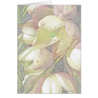 Cartão Flores da mandioca no lápis colorido