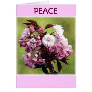 Cartão Flores da paz