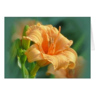 Cartão Flores de Bertie - hemerocallis