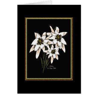 Cartão Flores de Edelweiss