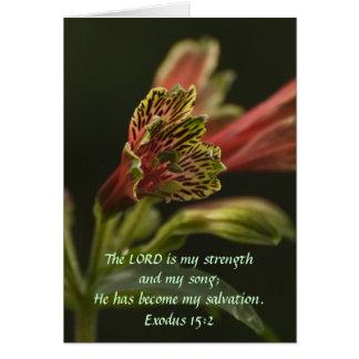 Cartão Flores do Freesia