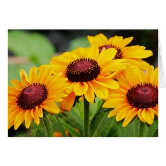 Cartão Flores do Rudbeckia