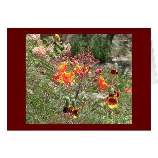Cartão Flores do sudoeste do deserto