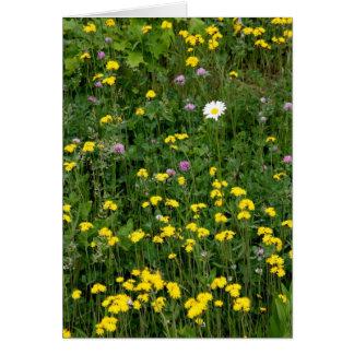 Cartão Flores do verão
