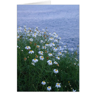 Cartão Flores e oceano