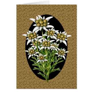 Cartão Flores elegantes de Edelweiss no costume do ouro