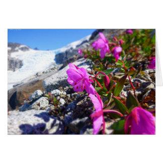 Cartão Flores na trincheira de Gilkey (vazio para dentro)