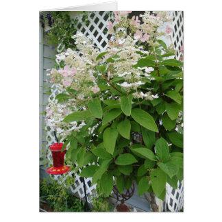 Cartão Flores no alimentador da treliça & do colibri