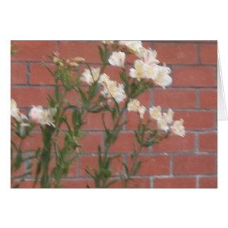 Cartão Flores no tijolo