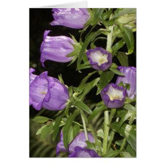 Cartão Flores roxas de Giverny