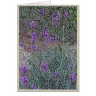 Cartão Flores roxas em um jardim do verão