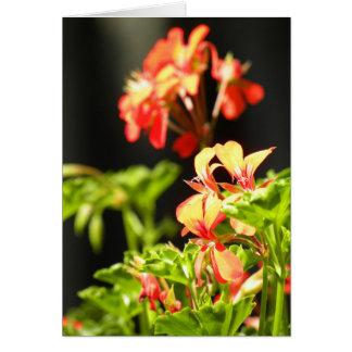 Cartão Flores ucranianas