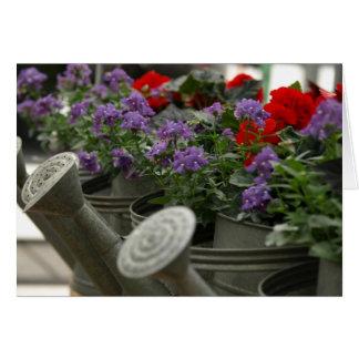 Cartão flores vermelhas e roxas em umas latas molhando