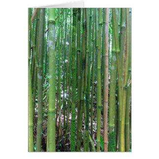 Cartão Floresta de bambu