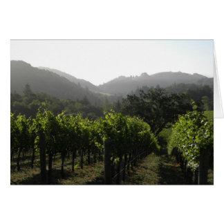 Cartão Floresta do vinhedo da manhã