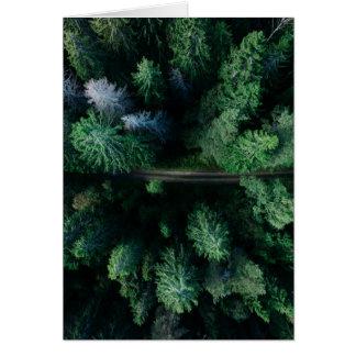 Cartão Floresta superior da árvore com caminhada do verde