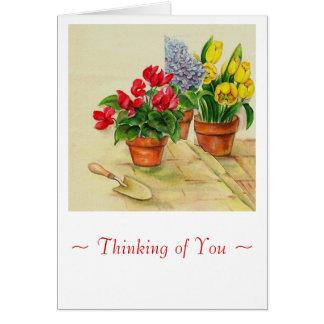 Cartão flowerpotssympathy