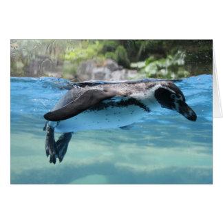 Cartão Flutuador do pinguim