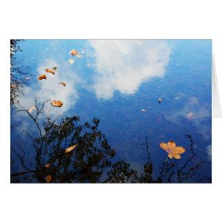 Cartão Folha na água