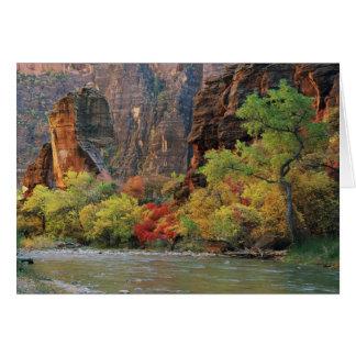 Cartão Folhagem de outono ao longo do rio do Virgin perto