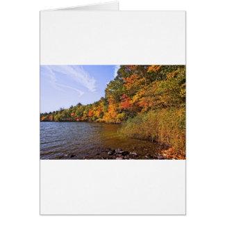 Cartão Folhagem de outono na lagoa do ponto