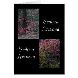 Cartão Folhagem de outono Sedona, arizona