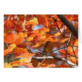 Cartão Folhas de outono 2