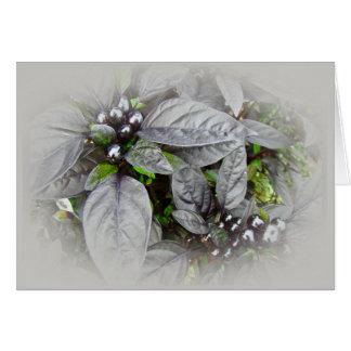 Cartão Folhas e bagas da prata