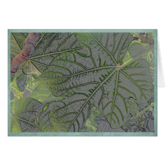 Cartão Folhas retroiluminadas em um jardim do verão