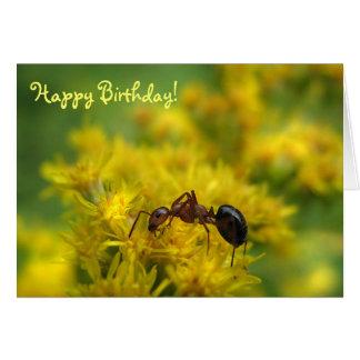 Cartão Formiga minúscula no aniversário Goldenrod