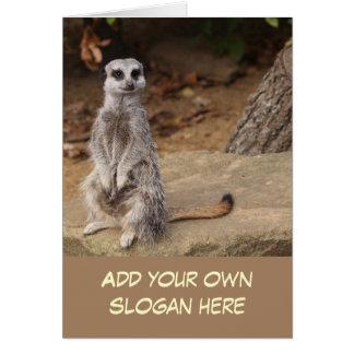 Cartão Foto bonito de Meerkat para personalizar-se